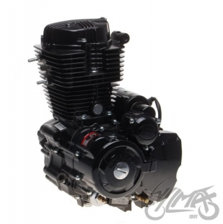 Motor SHINERAY ATV 250 STXE